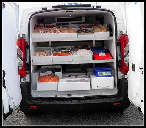 fish vans