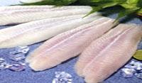 Cat Fish - Buy Fish Online