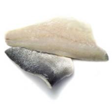 Sea Bream